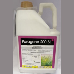 Paragone 200 SL 5 Ltr