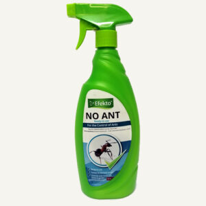 Efekto no ant
